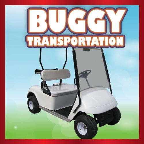 Buggy Transportation