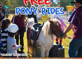 Free Pony Rides @12pm-4pm