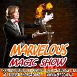 Magnificent Magic Show by Julian BULL Magic Show