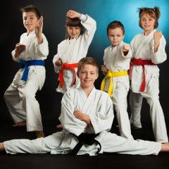 Western Sydney Martial Arts Performance!